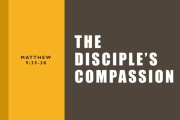 The Disciple's Compassion
