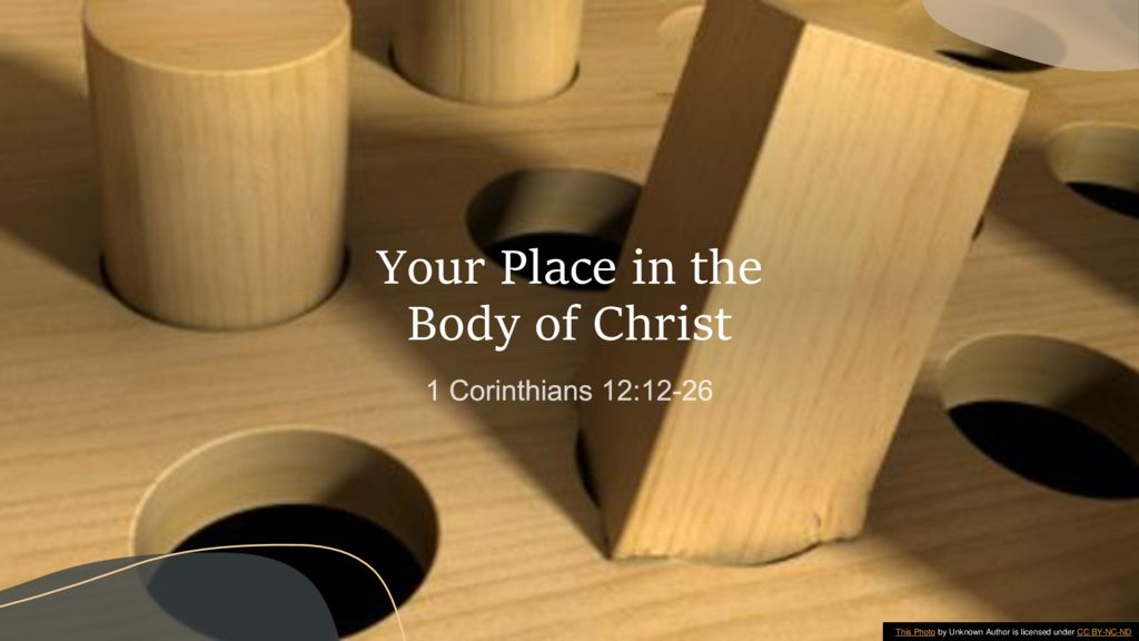 Your Place in the Body of Christ