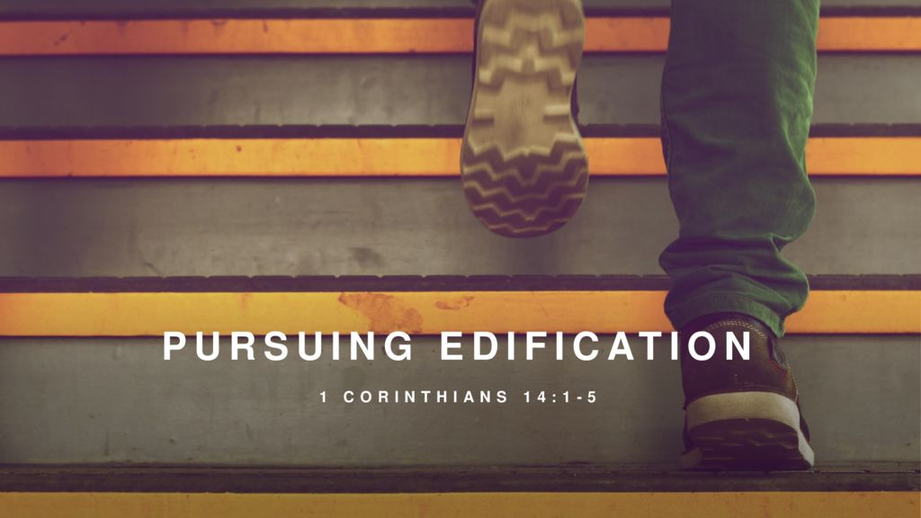 Pursuing Edification